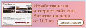 Изработване на интернет сайт тип Визитка на цена от 100 лв от Хоби БГ
